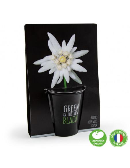 """Kit de plantation """"Black"""" Radis et Capucine Plante fleurie"""