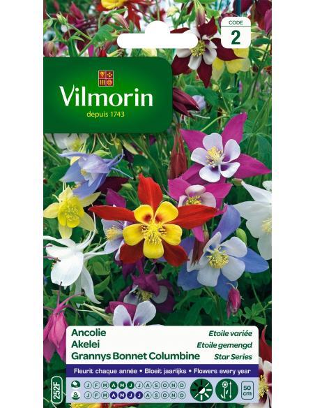 Ancolie étoilée variée Vilmorin Graines de fleurs