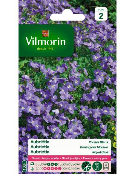 Aubrieta roi des bleus Vilmorin Graines de fleurs