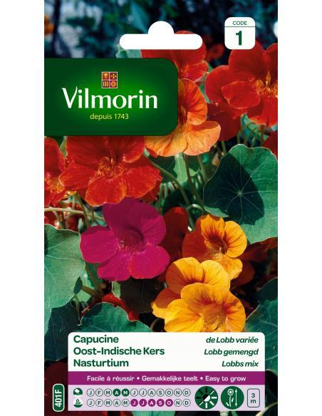 Capucine de Lobb varié Vilmorin Graines de fleurs