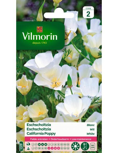 Eschscholtzia blanc Vilmorin Graines de fleurs