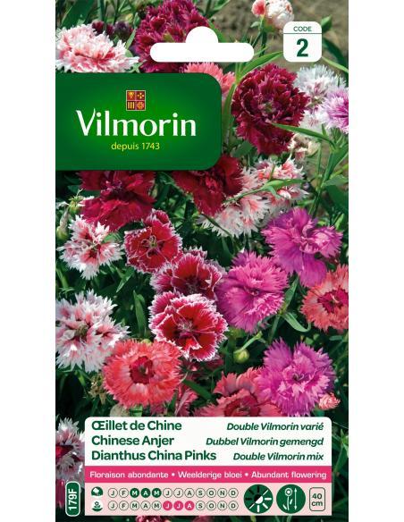 Oeillet de Chine double varié Vilmorin Graines de fleurs