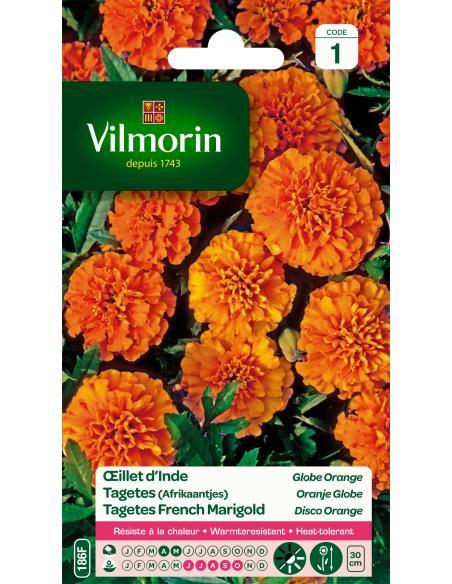 Oeillet d'Inde globe orange Vilmorin Graines de fleurs