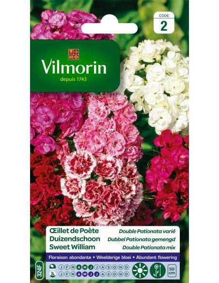 Oeillet de poète double pationata varié Vilmorin Graines de fleurs