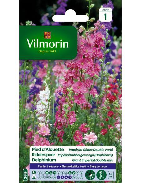 Pied d'Alouette impérial géant double varié Vilmorin Graines de fleurs