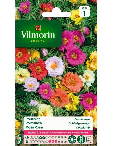 Pourpier double varié Vilmorin Graines de fleurs