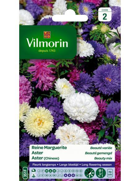 Reine Marguerite Beauté variée Vilmorin Graines de fleurs