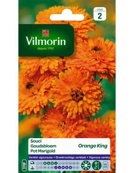 Souci orange king Vilmorin Graines de fleurs