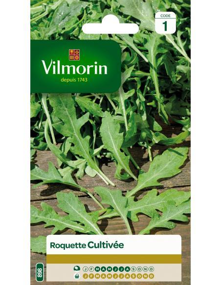 Roquette cultivée Vilmorin Graines aromatiques