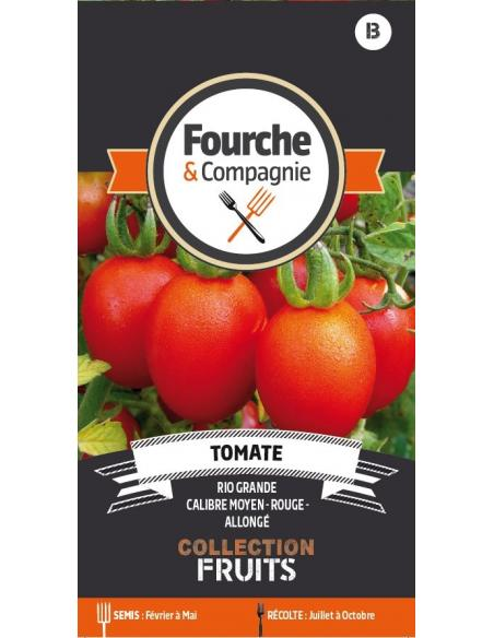 Tomate Rio Grande Fourche et Compagnie Graines potagères