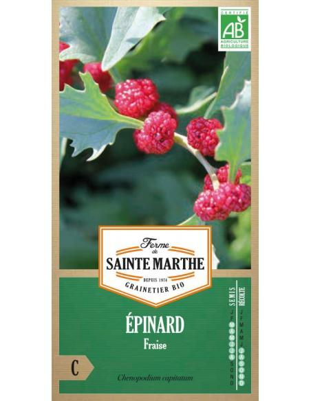 Epinard fraise La Ferme de Sainte Marthe Graines potagères