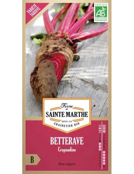 Betterave Crapaudine La Ferme de Sainte Marthe Graines potagères