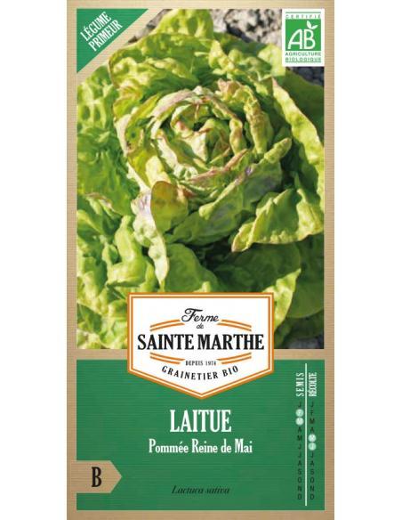 Laitue pommée Saint Antoine La Ferme de Sainte Marthe Graines potagères