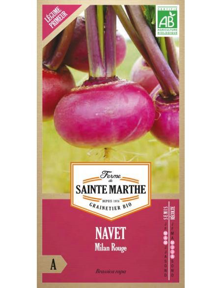 Navet de Milan rouge La Ferme de Sainte Marthe Graines potagères
