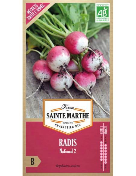 Radis national 2 La Ferme de Sainte Marthe Graines potagères
