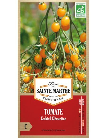 Tomate cocktail Clémentine La Ferme de Sainte Marthe Graines potagères