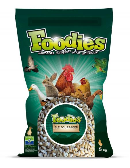 Blé fourrager 5Kg Foodies Alimentations et accessoires