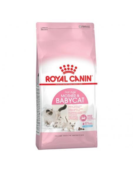 Féline Mother & Babycat 2 Kg Royal canin Alimentation et accessoires
