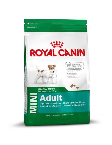 Mini Adult 4Kg Royal canin Alimentation et accessoires