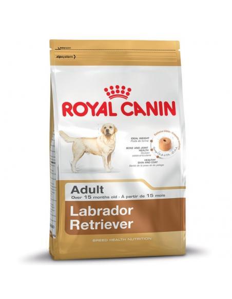 Labrador 15Kg Royal canin Alimentation et accessoires
