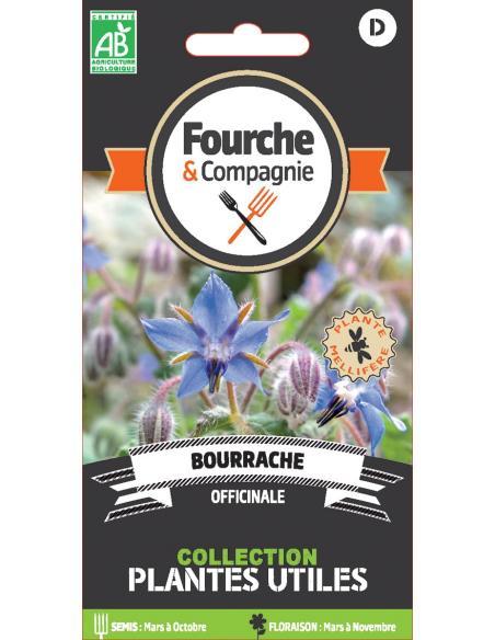 Bourrache officinale Fourche et Compagnie Graines aromatiques