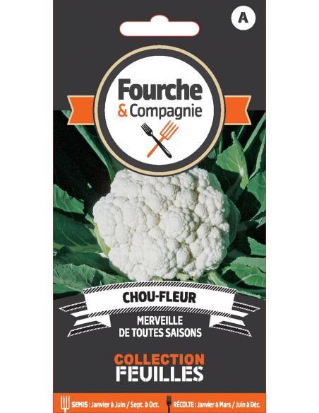 Chou-fleur merveille de toutes saisons Fourche et Compagnie Graines potagères