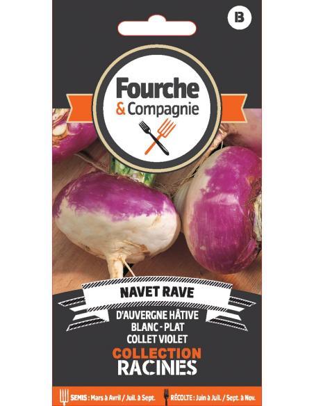 Navet rave d'Auvergne hative Fourche et Compagnie Graines potagères