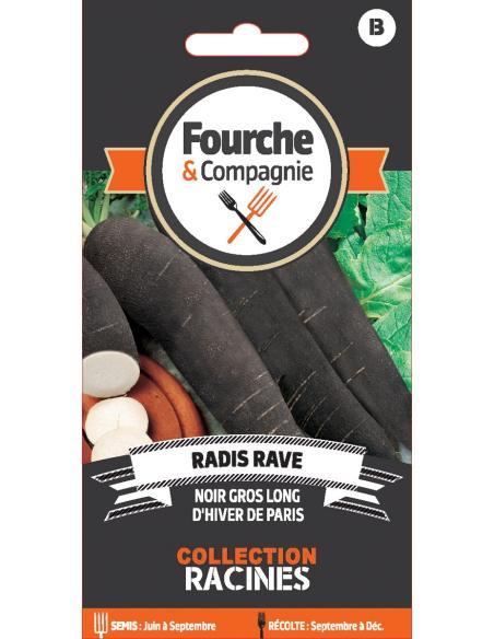 Radis rave noir gros long hiver de Paris Fourche et Compagnie Graines potagères