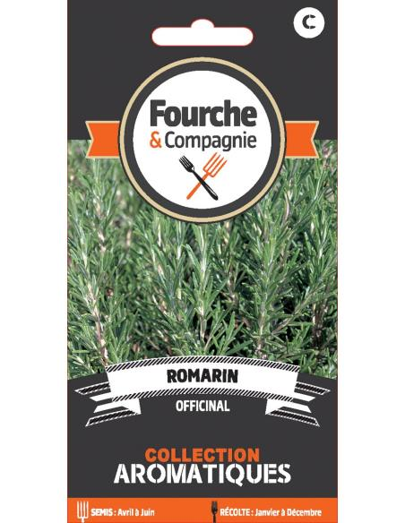 Romarin officinal Fourche et Compagnie Graines aromatiques