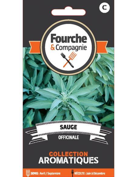 Sauge officinale Fourche et Compagnie Graines aromatiques