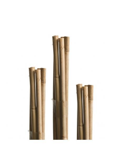 Tuteur Bambou Naturel 60 cm Windhager Tuteurage et autres accessoires