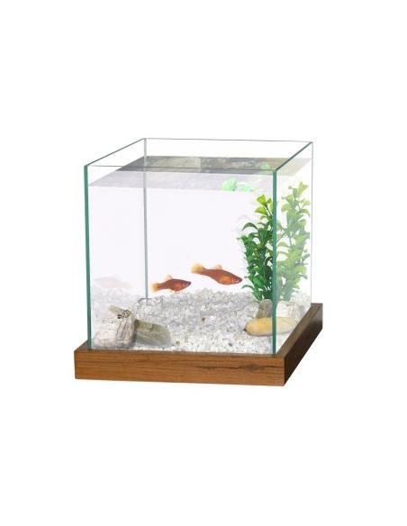 Aquarium combattant Wenge  Aquariums et meubles pour aquariums