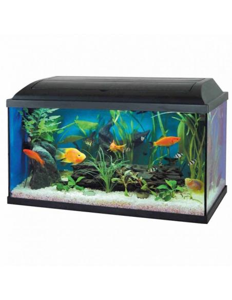 Aquarium Pacific 54L Pacific Aquariums et meubles pour aquariums