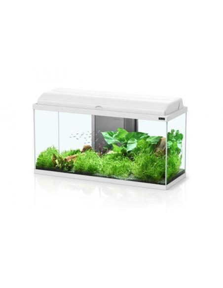 Aquarium Aquadream 60 LED Aquatlantis Aquariums et meubles pour aquariums