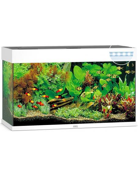 Aquarium Rio 125 LED Juwel aquarium Aquariums et meubles pour aquariums