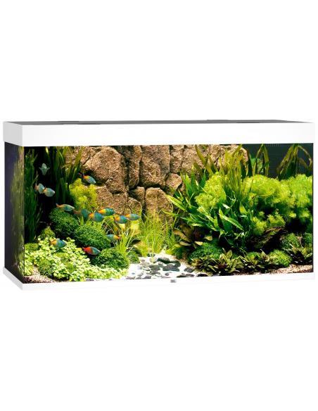 Aquarium Rio 300 LED Juwel aquarium Aquariums et meubles pour aquariums