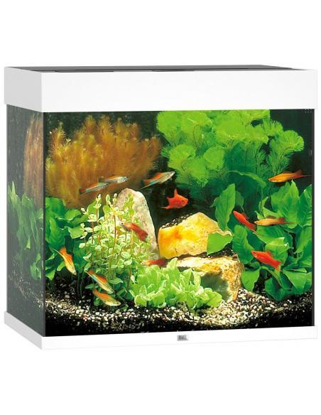 Aquarium Lido 120 LED Juwel aquarium Aquariums et meubles pour aquariums