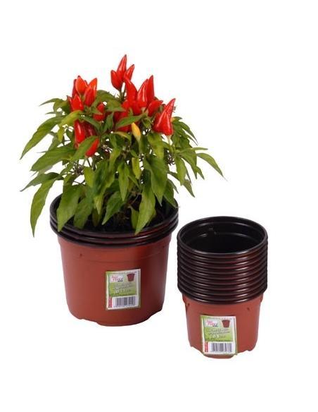 Pot de Germination Ø 13 cm x 3 Jany Flore Matériel pour semis