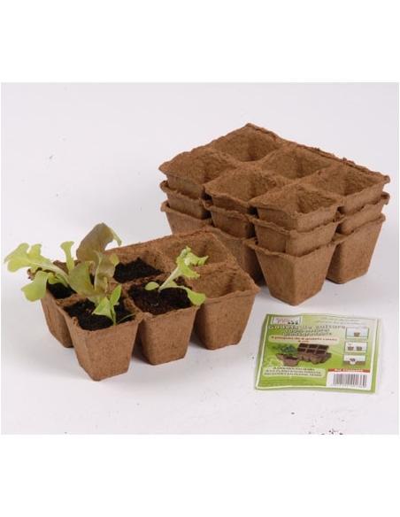 Plaque de Tourbe 6 Pots Carrés 6 x 6 x 5 cm X 5 Jany Flore Matériel pour semis