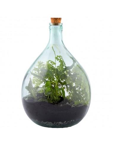 Bouteille terrarium 15L set Esschert Design Vases et fleuristerie