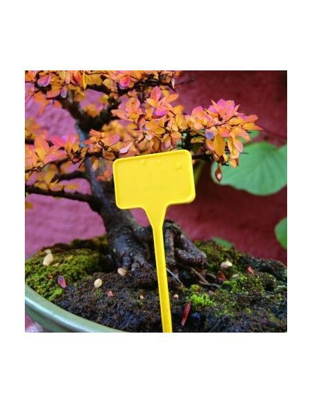 Etiquettes à planter Label 15 X 10 Nortène Matériel pour semis